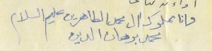 Mamlook Aale Mohammed al Tahereen, Mohammed Burhanuddin